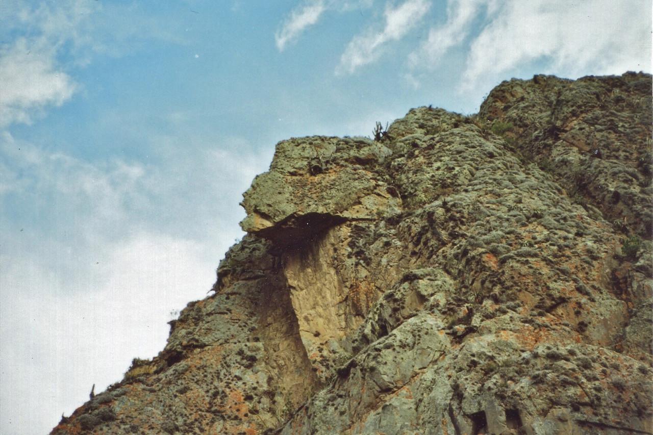 The Condor of Ollantaytambo